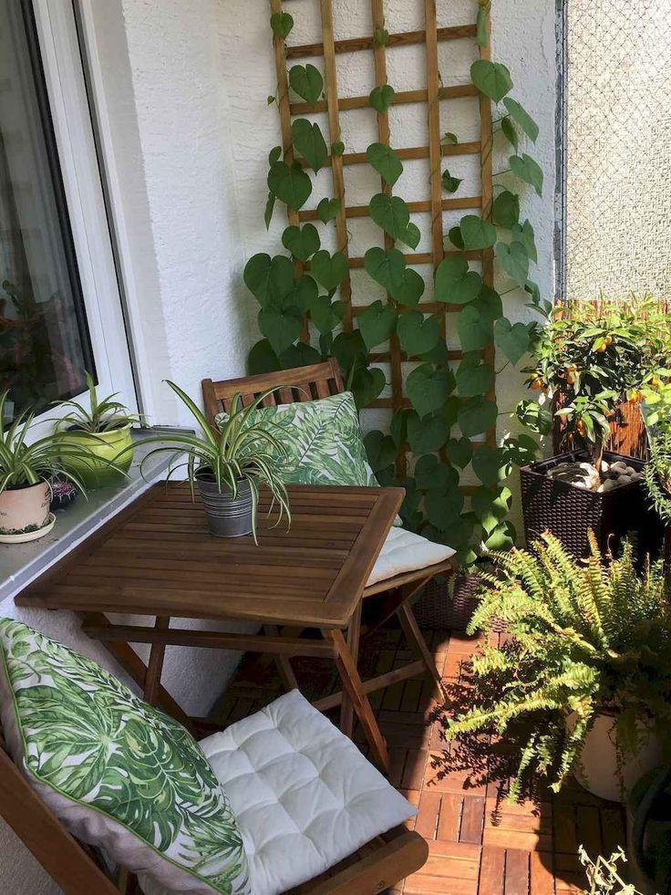 plantas trepadoras para balcones pequeños
