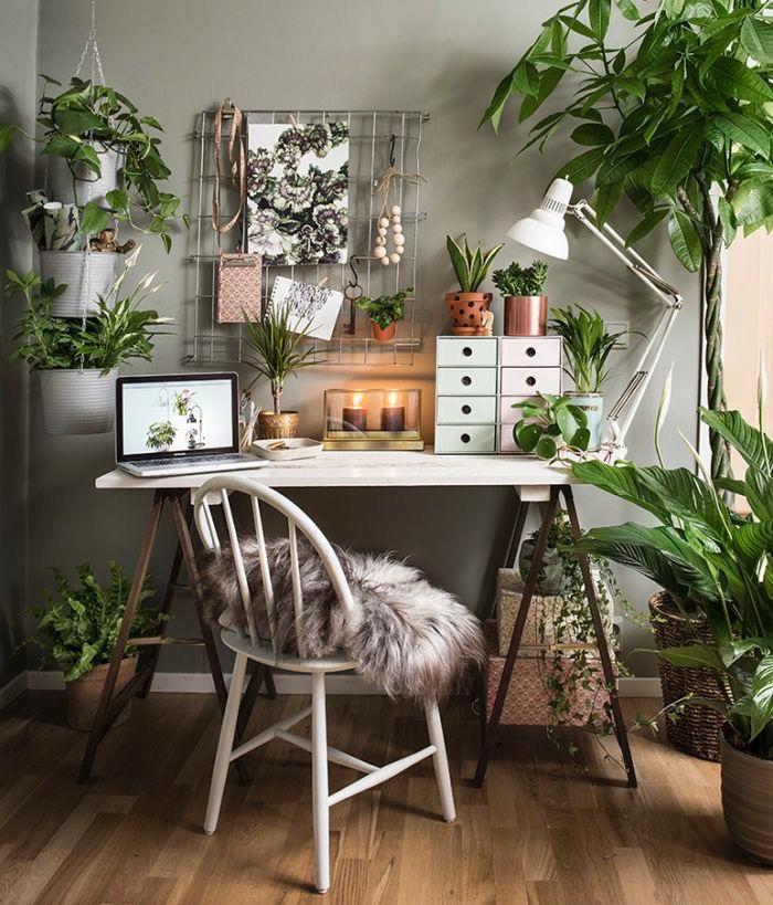 Plantas para la oficina en casa