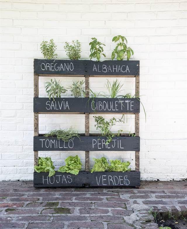 Palets para plantar hierbas aromáticas