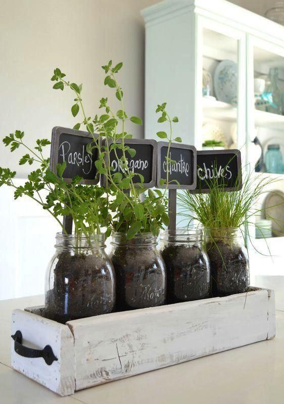 Botes reciclados para plantas aromáticas