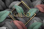 galso_logo